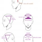 División corte de cabello