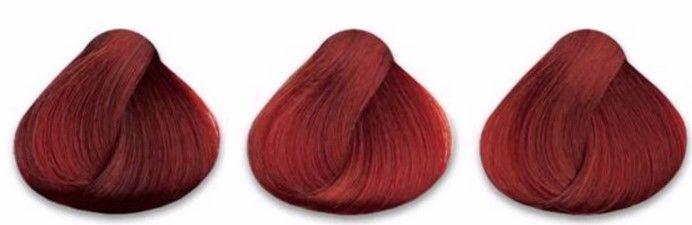 rojos intensos