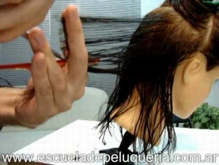 proyeccion mechas cabello