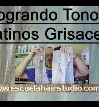 logrando-gris-en-el-cabello