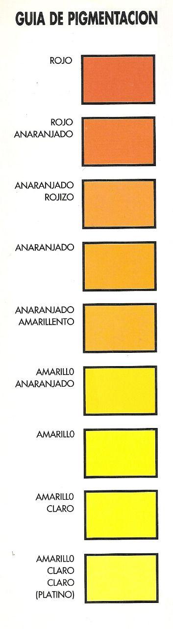 Guia Tonos Amarillo Cabelllo