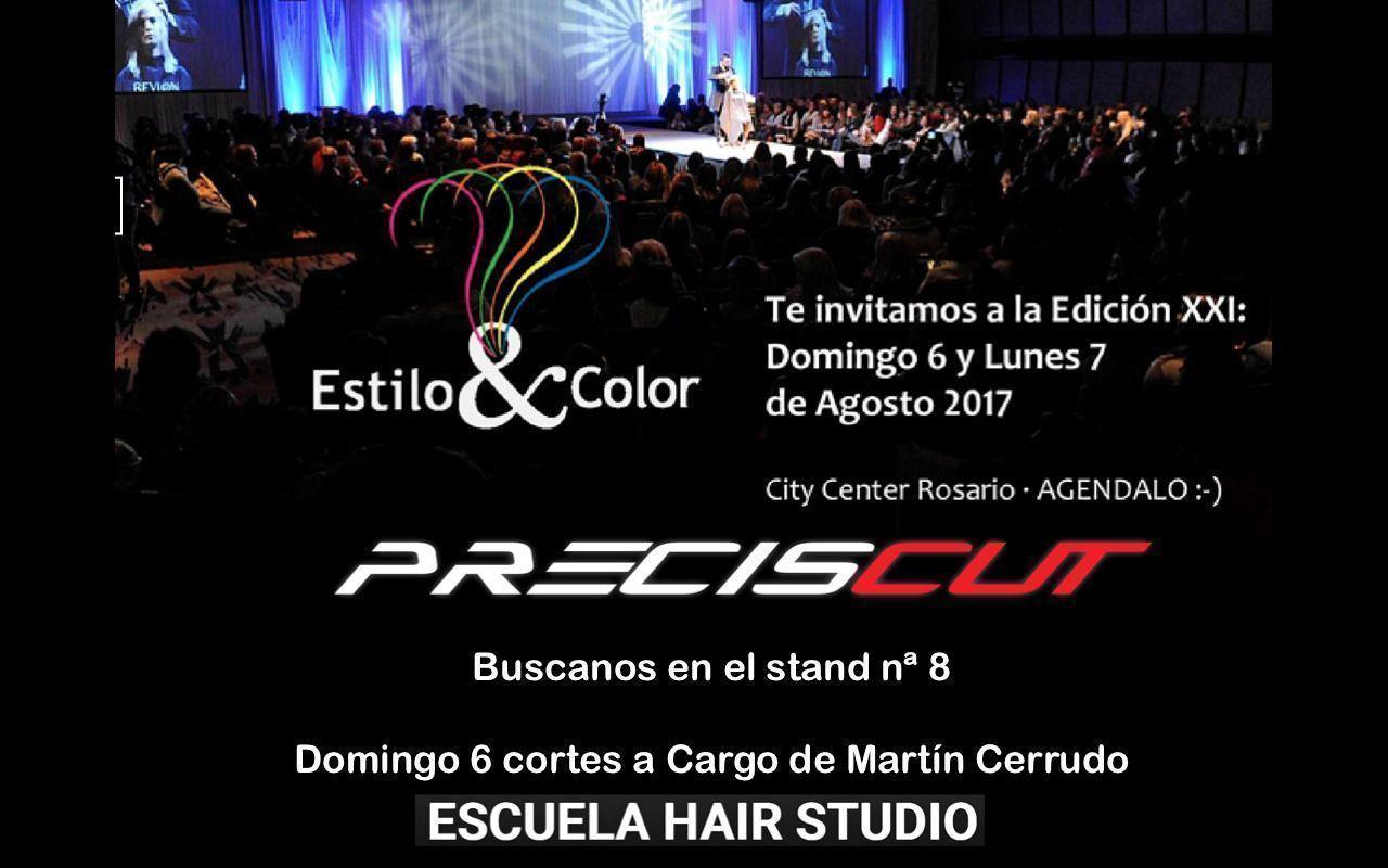 Preciscut Estilo y Color 2017